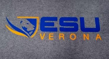 wycieraczki z logo